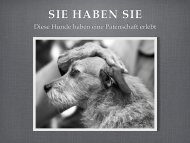 PDF-Dokument zum Download - hundehilfemittelitalien