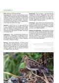 4 • 2012 Magazin für Arten- und Biotopschutz - LBV Untermain - Seite 7