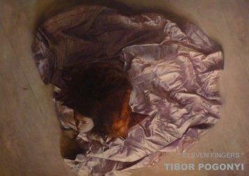 TIBOR POGONYI - on ARTplacing.com