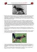 Geschichte des Zwingers - Von Arlett - Seite 2