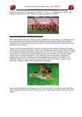 Geschichte des Zwingers - Von Arlett - Seite 7