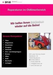 download - DSI-Laser-Service