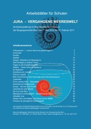 JURA - veRgAngene MeeReswelt - Naturhistorisches Museum Bern