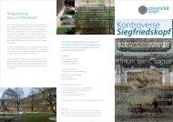 Kontroverse Siegfriedskopf - Roger Baumeister