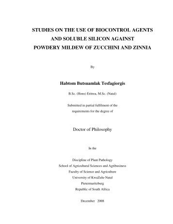 Habtom PhD Thesis Final.pdf - Silicon in Agriculture