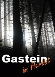 Badgastein-Herbst 2013