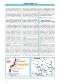 sonderdruck aus tierärztliche umschau - Borna-Borreliose-Herpes - Page 4