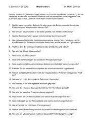 9. Seminar im SS 2012: Mitochondrien Dr. Martin Schmidt Die hier ...