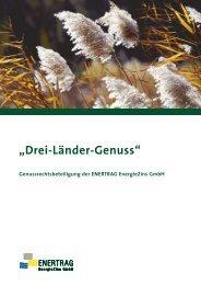 Enertrag Wertpapierprospekt 2008-12-04 - Anleihen-Finder.de