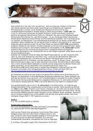 Holsteiner Pferd - Pferdezucht-Blog Startseite