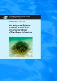 Macroalgae and phytoplankton as indicators of ... - Naturstyrelsen