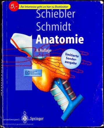 Schiebler / Schmidt Anatomie