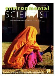 C&C_the 'numeraire': - 2011 Article_for IES Journal - Global ...