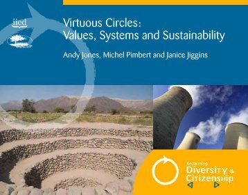 Virtuous Circles: Values, Systems and Sustainability - IIED pubs ...