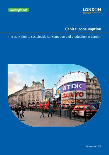 Capital consumption - London Sustainable Development Commission