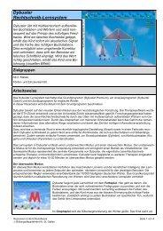 Dybuster Rechtschreib-Lernsystem (257 kB, PDF) - schule.sg.ch
