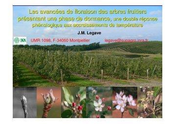 Les avancées de floraison des arbres fruitiers présentant une phase ...