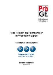 Zwischenbericht zum PEER-Projekt in Gelsenkirchen - Stadt ...