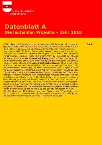 Datenblatt A - Die laufenden Projekte – Jahr 2010