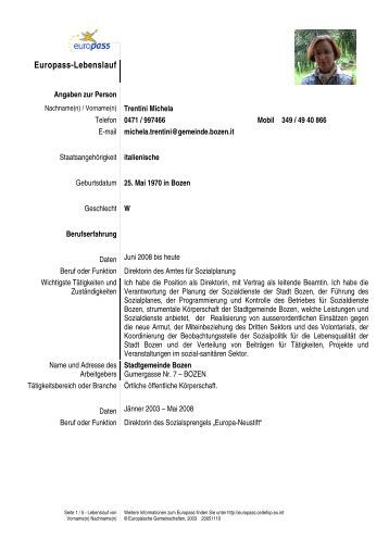 Groß Modernster Lebenslauf Stil Ideen - Dokumentationsvorlage ...