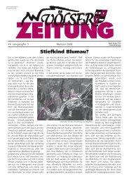 Völser Zeitung Mai-Juni 2008 (1,85 MB
