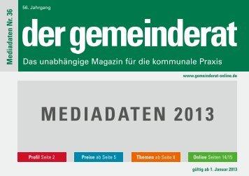 MediadaTeN 2013 - Der Gemeinderat