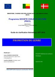 Promotion du genre: guide de clarification thématique APP - MdSC