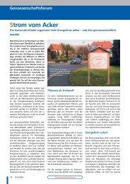 Strom vom Acker, Bankinformation 9/04 - Die Genossenschaften