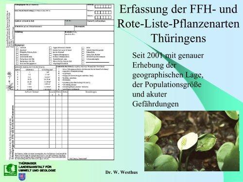 Statement: Situationsbericht aus Thüringen