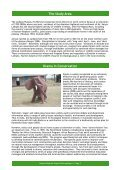 Laikipia Elephant Project - University of Cambridge Department of ... - Page 5