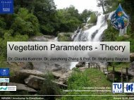 Vegetation Parameters - Theory