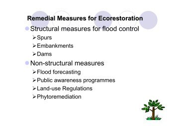 Measures for Ecorestoration in the Brahmaputra