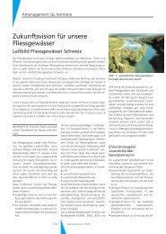 Zukunftsvision für unsere Fliessgewässer - Geomatik Schweiz
