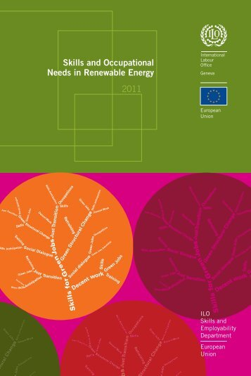 Skills and Occupational Needs in Renewable Energy - International ...