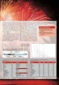 Dicke Luft - Feuerwerk und seine Risiken durch ... - Seite 3