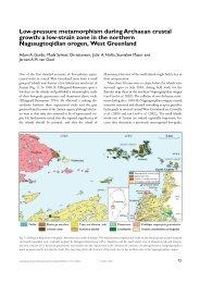 Geological Survey of Denmark and Greenland Bulletin 4 ... - Geus