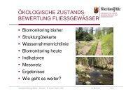 Vortrag 2 Fischer | PDF 1 MB