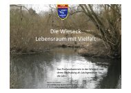 Vortrag 5 Das Fischvorkommen in der Wieseck und deren ...