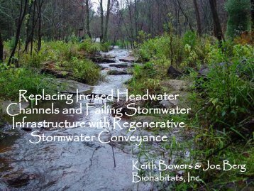 Replacing Incised Headwater Channels and Failing Stormwater