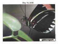 Glebe Report - Volume 38 Number 5 - May 16 2008