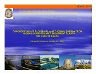 Perspectives from Brazil - Global Methane Initiative