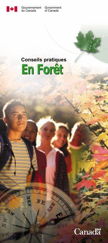 Survie en forêt - Gouvernement du Nouveau-Brunswick