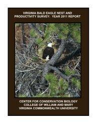 Virginia Bald Eagle Nest and Productivity Survey: 2011 Report