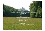Gewaesserrenaturierung_Krick   PDF 3,3 MB