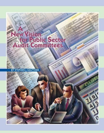 A New Vision for Public Sector Audit Committees - Government ...