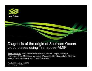 Diagnosis of the origin of Southern Ocean biases usin - GEWEX