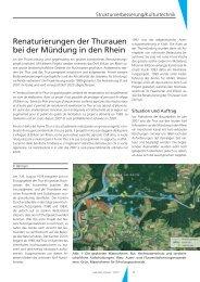 Renaturierungen der Thurauen bei der Mündung in den Rhein