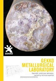 GEKKO METALLURGICAL LABORATORY - Gekko Systems