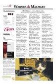 Evening Star: Görliwood lässt grüßen - Görlitz Tourismus - Page 2