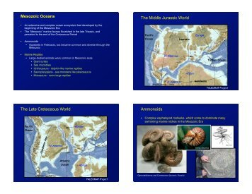 Mesozoic seas, Modern land plant evolution